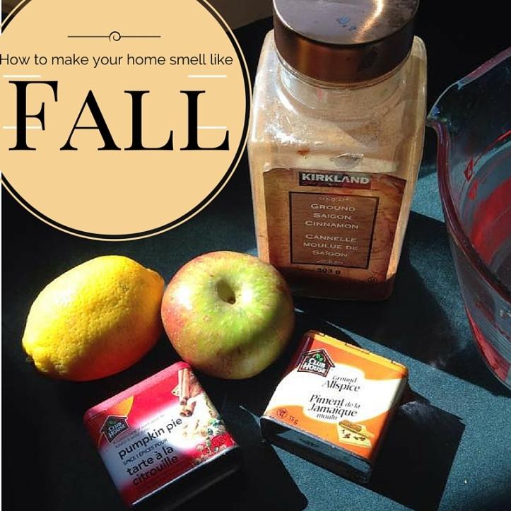 Make your house smel like Cozy Fall!(2)